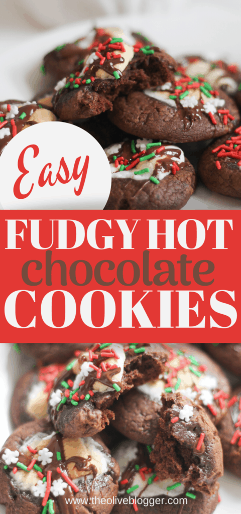 Easy fudgy hot chocolate cookies